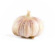 Unwashed pink garlic Stock Photography