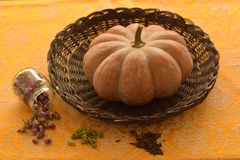 Unwashed Pumpkin in a Basket royalty free stock images