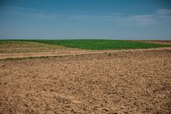 Unworked field with wheel tracks in spring near wheat land. Dirt texture with blue sky. Country dirt field texture. Country dirt road texture. Land without crop stock image