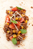 Unwrapped Tortilla with Beef Chili Royalty Free Stock Photography