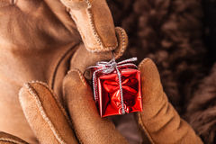 Unwrapping christmas gift Royalty Free Stock Image