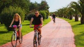 Uomini atletici e donne che guidano una bici al bello parco verde, all'estate ed allo sport video d archivio