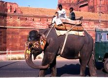 Uomini che guidano un elefante fuori della fortificazione rossa, Delhi fotografia stock libera da diritti