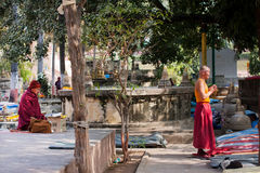 Uomini che pregano in un parco vicino al tempio buddista Fotografie Stock Libere da Diritti