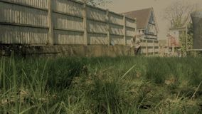 Uomini che tagliano erba nel giardino archivi video
