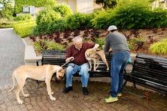 Uomini con il cane Fotografie Stock Libere da Diritti