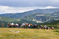 Uomini con il carico del cavallo in montagna Fotografia Stock