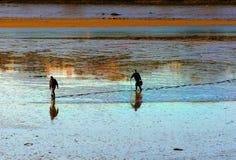 Uomini di pesca che scavano per il verme del polmone e l'esca di pesca Immagine Stock Libera da Diritti