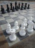 Uomini di scacchi Immagine Stock