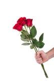 Uomini disponibili del fiore del mazzo della rosa rossa isolati con il percorso di ritaglio Fotografia Stock