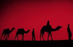 Uomini indiani indigeni che camminano con il concetto del cammello del deserto Fotografie Stock