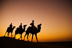 Uomini indiani indigeni che guidano attraverso il deserto con il suo cammello Immagine Stock Libera da Diritti