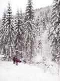 Uomini nel legno nell'inverno Immagini Stock Libere da Diritti