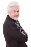 Uomo anziano bello con la barba grigia Immagini Stock
