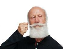Uomo anziano con una barba lunga Immagini Stock Libere da Diritti