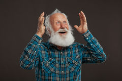 Uomo anziano con una barba lunga con il grande sorriso Immagini Stock Libere da Diritti