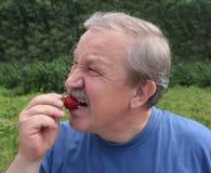 Uomo anziano, mangiante una fragola Fotografia Stock