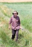 Uomo anziano nel campo Fotografia Stock