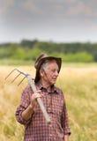 Uomo anziano nel campo dell'orzo Fotografia Stock