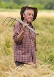 Uomo anziano nel campo dell'orzo Fotografia Stock Libera da Diritti