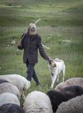 Uomo armeno con le sue pecore in una campagna fotografie stock