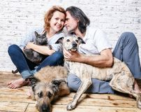 Uomo attraente e la sua giovane moglie con gli animali domestici, due cani e un gatto, fotografia stock libera da diritti