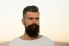 Uomo barbuto all'aperto Fotografia Stock Libera da Diritti