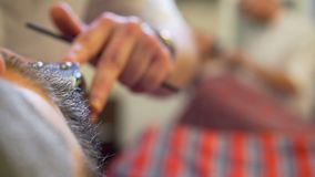 Uomo barbuto che ottiene taglio di capelli della barba e raso stock footage