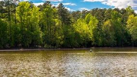 Uomo in barca della squadra sulla rematura del lago con gli alberi nei precedenti immagini stock libere da diritti