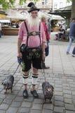 Uomo bavarese con due bassotti tedeschi Fotografia Stock