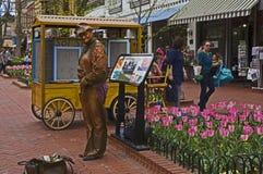 Uomo bronzeo Fotografie Stock Libere da Diritti
