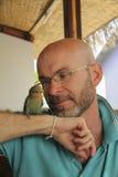 Uomo caucasico calvo in vetri che esaminano il pappagallo Fotografie Stock Libere da Diritti
