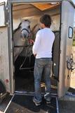 Uomo, cavalli e rimorchio Fotografia Stock Libera da Diritti