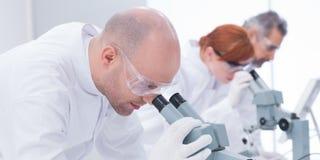 Uomo che analizza sotto il microscopio Immagine Stock Libera da Diritti