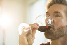 Uomo che assaggia vino rosso a casa Fotografia Stock Libera da Diritti