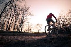 Uomo che biking al tramonto Immagine Stock Libera da Diritti