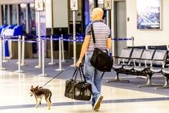 Uomo che cammina il suo cane in un aeroporto Fotografia Stock