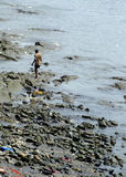Uomo che cammina lungo la spiaggia Fotografie Stock Libere da Diritti