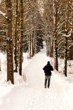 Uomo che cammina nell'inverno Fotografia Stock Libera da Diritti