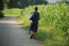Uomo che cammina oltre il campo di mais Fotografia Stock Libera da Diritti