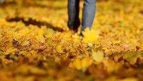 Uomo che cammina sulle foglie di autunno video d archivio