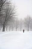 Uomo che cammina in una sosta nevosa Fotografia Stock Libera da Diritti