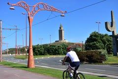 Uomo che cicla in una passeggiata Nessun fronte, gente irriconoscibile Parco pubblico, alberi e strada Cielo blu, giorno soleggia fotografia stock