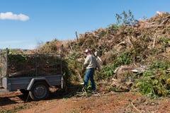 Uomo che di svuotamento lo spreco del giardino allo scarico della città Immagine Stock Libera da Diritti