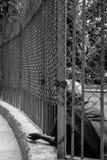 Uomo che elemosina tramite un recinto Fotografia Stock Libera da Diritti