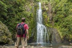 Uomo che esamina cascata scenica in Nuova Zelanda fotografie stock libere da diritti