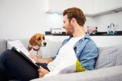 Uomo che esamina lavoro di ufficio e che gioca con il cane di animale domestico  immagine stock