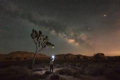 Uomo che esplora Joshua Tree National Park alla notte Immagini Stock