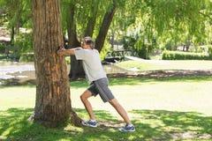 Uomo che fa allungando esercizio contro l'albero Immagini Stock Libere da Diritti
