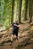 Uomo che fa funzionamento della traccia nella foresta Fotografia Stock